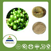cGMP Manufacture High Quality 100% Natural Organic Green Coffee Extract Powder Price KS-29