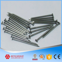 "1"" Wire Nail Common Carbon Steel Wire Nail Length 1"" Popular Sizes"