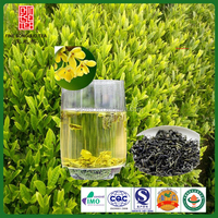Special jasmine green tea with good prices and taste