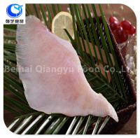 frozen seafood ray/skate wings fish fillet