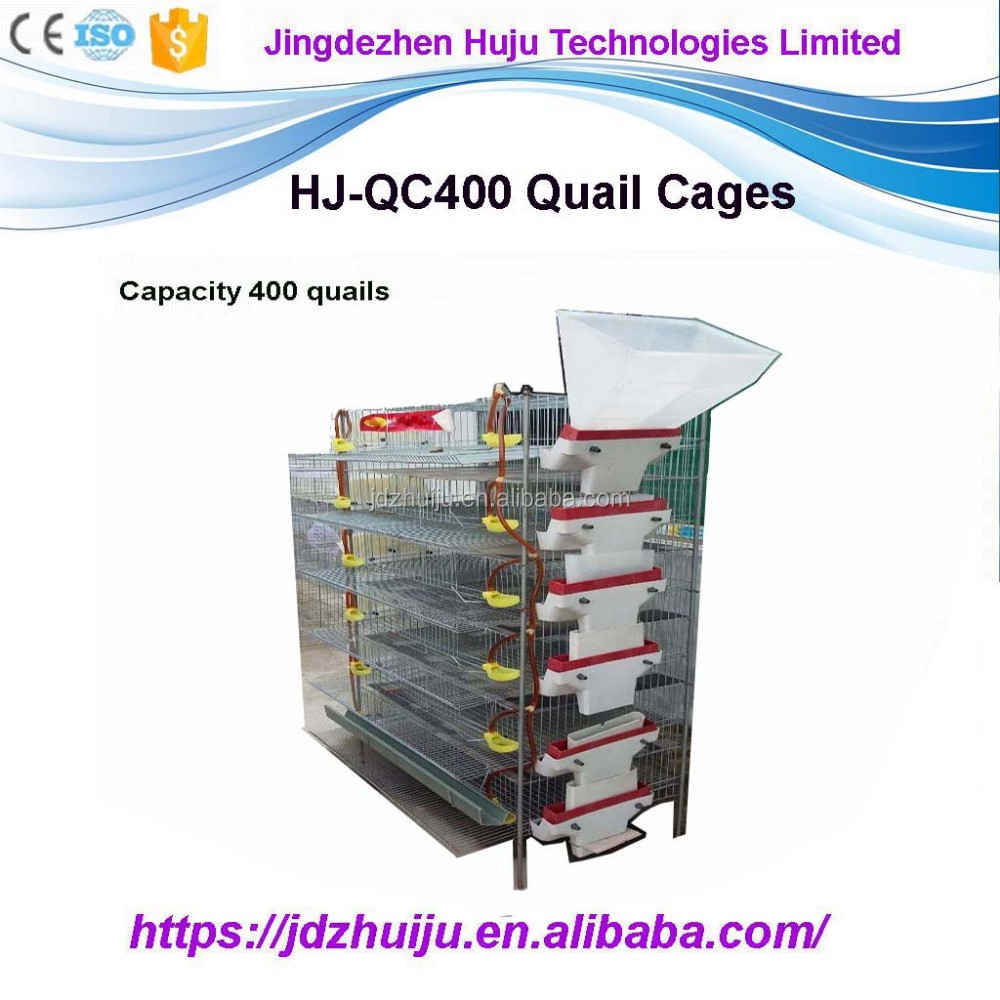 Good Quality Poultry Quail Egg Cage Quail For Sale