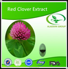 Gmp High Natural Quality Red Clover Extract Isoflavone/Trifolium pratense extract
