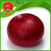 /product-detail/chinese-red-fresh-onions-yunnan-origion-healthy-onions-60417453770.html