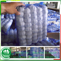 fresh garlic factory directly supply with different size and packing on sale in the coming new year