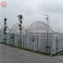 Modern design tunnel poly film greenhouse for sale