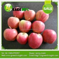 Fresh Royal Gala Organic Sweet Gala Apples