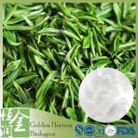China Supplier In Bulk Green Tea Extract Powder