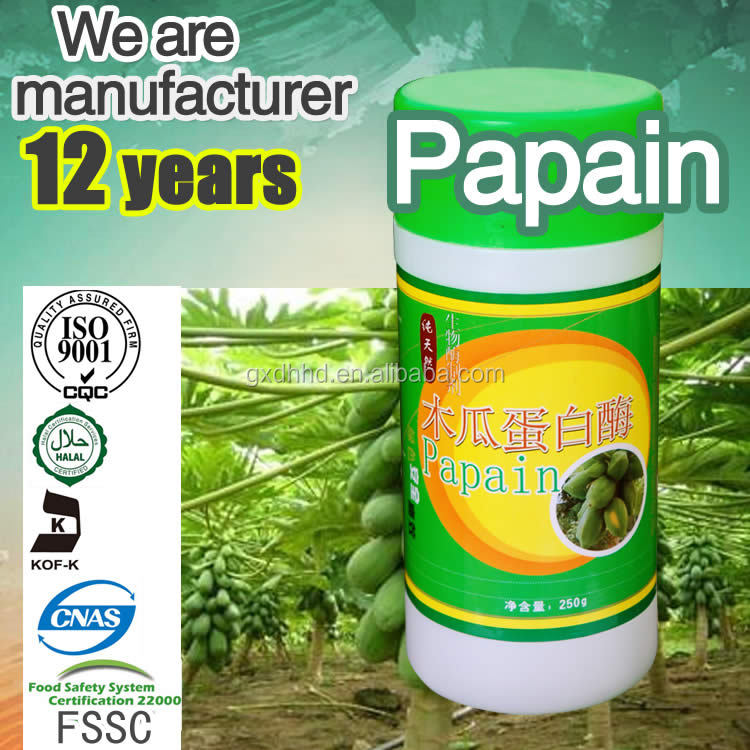 Papain 10% wholesale papaya extract new product pawpaw seed extract