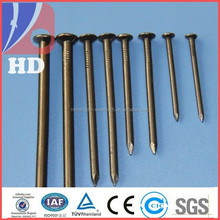 Polished Common Nails/ common iron nail /common wire nail