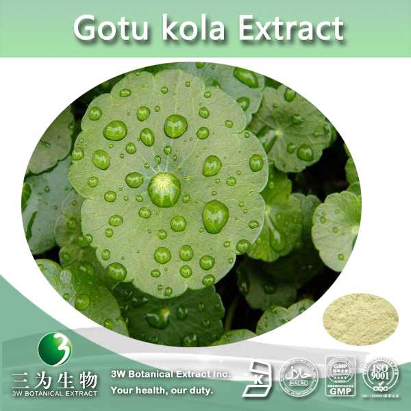 Hydrocotyle Asiatica extract 10%~ 80% Total Triterpenoid Glycosides,Triterpenes