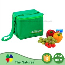 Samples Are Available Custom Logo Cool Picnic Cooler Bag For Diabetic
