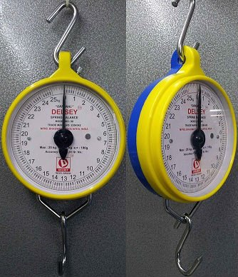 Salter Type Hanging Scale