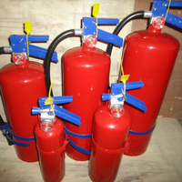Mexico type dry powder fire extinguisher