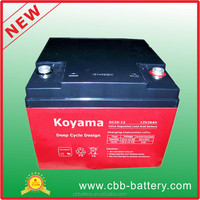 Electric Power tools battery 12V24 AH Deep Cycle Battery, AGM VRLA Battery