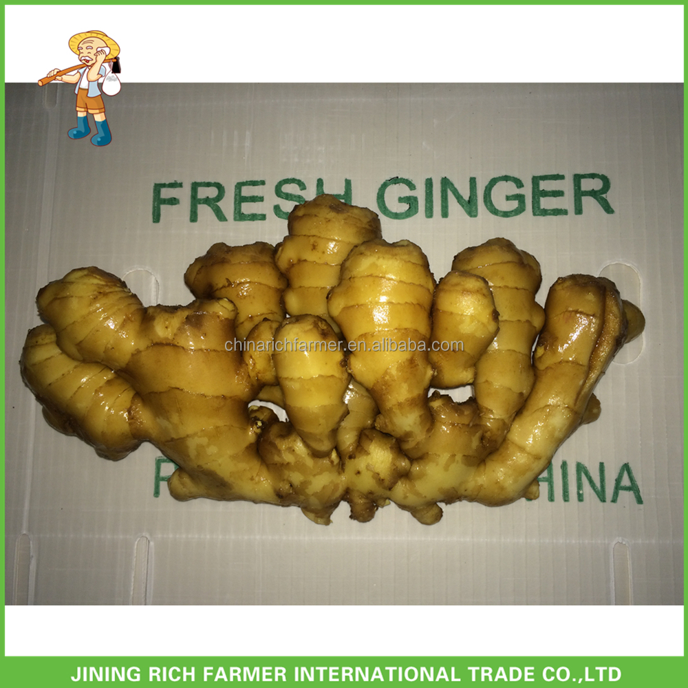 Price of New Crop Fresh Ginger