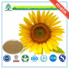 GMP Factory Supply Organic sunflower lecithin