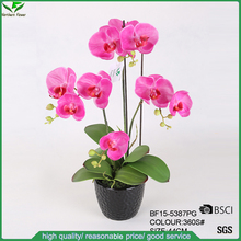 Real Touch Artificial Butterfly Orchid Flowers Pots for Indoor Decor