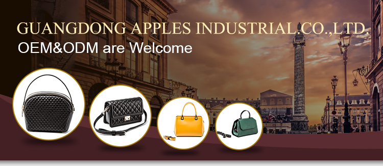 Factory Wholesale New Design Custom Logo Lady Leather Handbag Satchel Bag