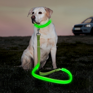 2018 top performance pet products led flashing dog lead pet leash