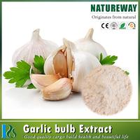 Chinese supplier wholesales garlic extract allicin powder powder