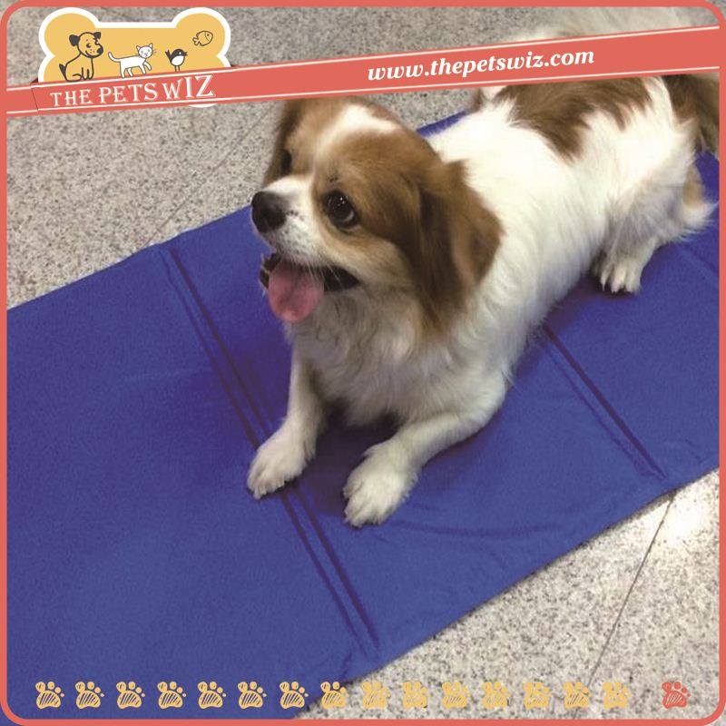 Pet training gel cool mat ,AYkn colling mat for dogs for sale