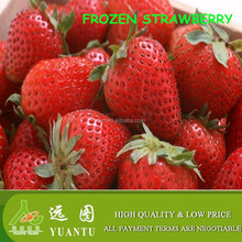 Frozen Strawberry interesting products from china