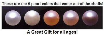 perfect gift wish love pearl necklace set,genuine pearl in oyster