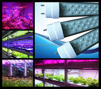 fast delivery T8 LED Tube grow light 144pcs 60cm SMD 3528 Led Plant Growth Light d310