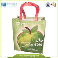 Promotion Rpet shopping bag/pet bag/pet shopping bag