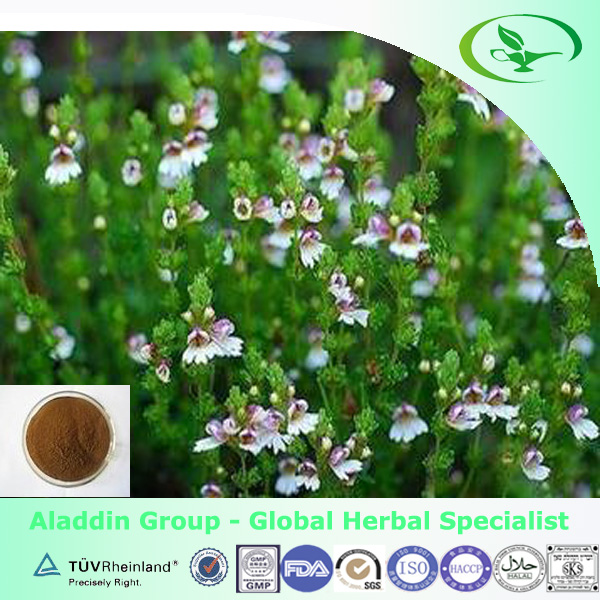 Eyebright extract Good for Eyes