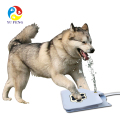 Best Tech Pet dog Activated Fountain Healthy Outdoor 40 Hose Pet Spray Paw Water Fountain Feeder Drinking Spring Pedal Fountain