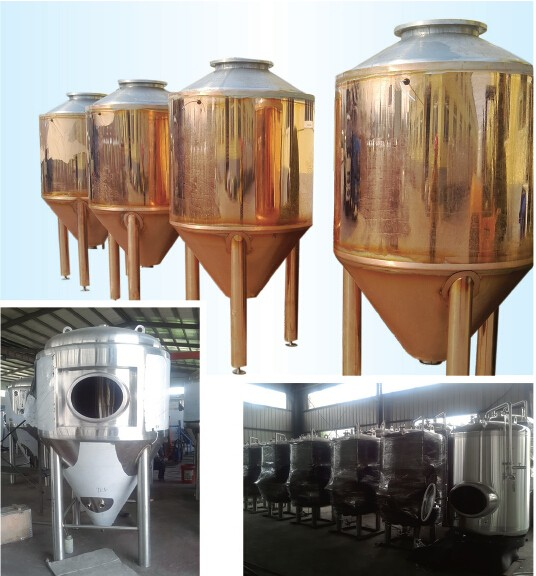 Wine/Beer Fermentation Tank