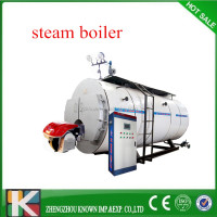 Quick Steam Generation 3-pass Horizontal Style Gas Fired Steam Boiler,Oil Steam Boier Price