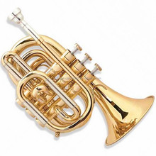 Afanti Music Gold Lacquer Pocket Trumpet (ATR-230)