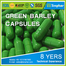 10 Year Experience Health Care Product Barley Grass Softgel