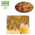 seabuckthorn fruit extract powder Free sample For South Korea