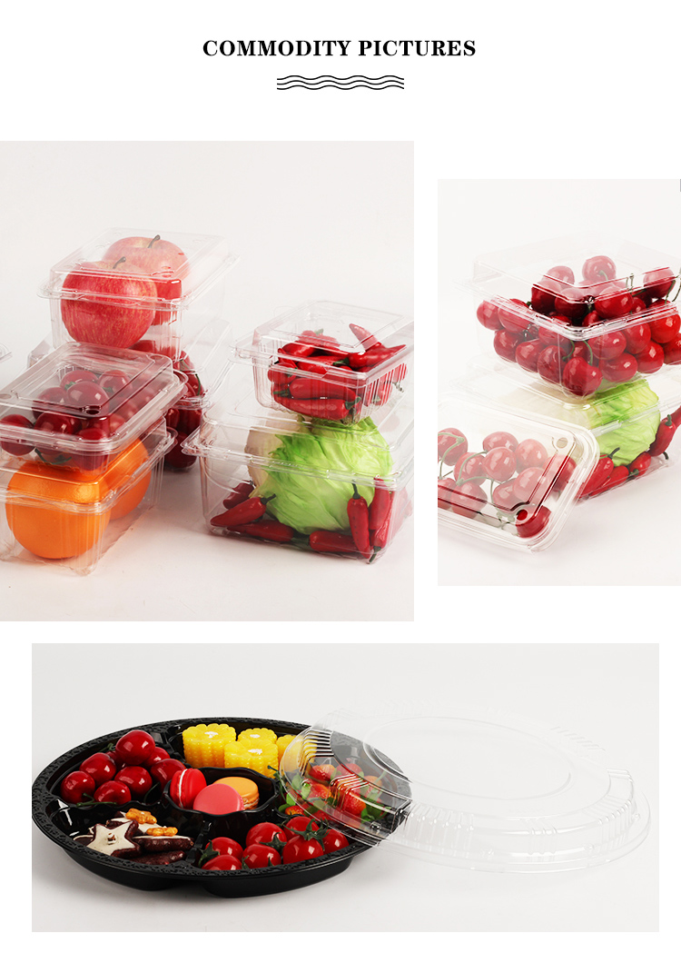 3 divided food plastic compartment tray with compartments