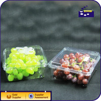 Global wholesale disposable 2014 plastic dry fruit tray