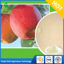 hot sell organic apple cider vinegar powder