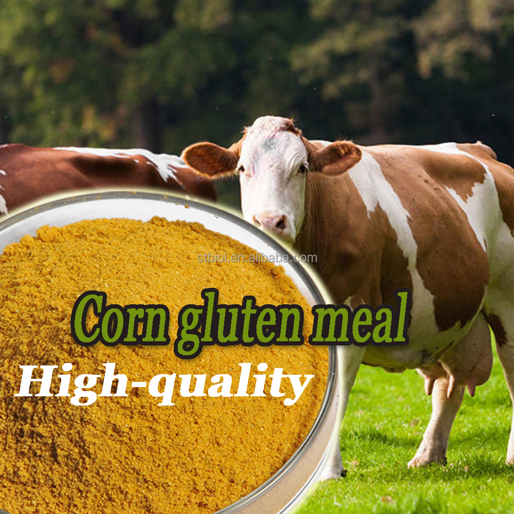 High-quality animal feed corn gluten meal
