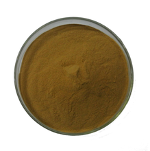 High Pure Factory Price Green Tea Extract