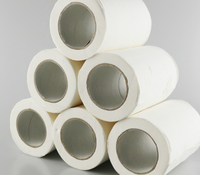 wholesale bulk toilet paper with core/wholesale bulk toilet tissue/hotel paper small roll