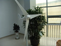 200w small horizontal axis wind generator for home use
