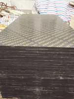 Hot sale 18mm plywood Black Film Faced Plywood, China Linyi