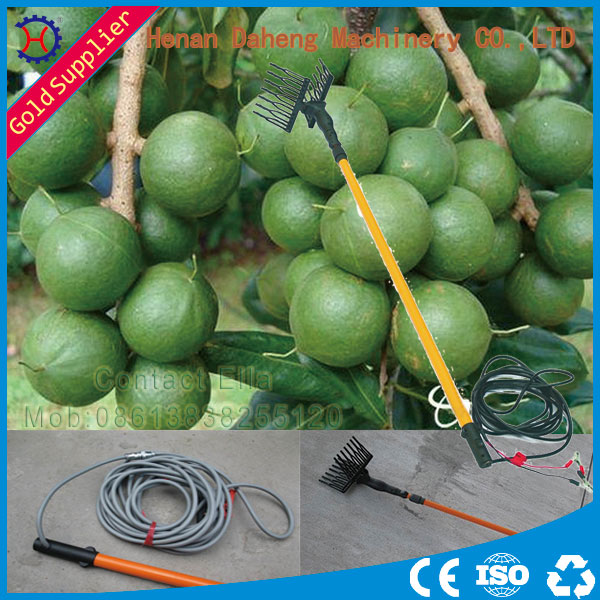 olives harvesting machine