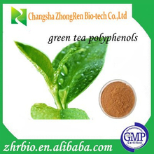 Low Price GMP Certified 90% Polyphenols Green Tea Powder Extract