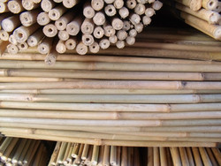 Plant Support bamboo stakes 120cm, Dia.10-12mm