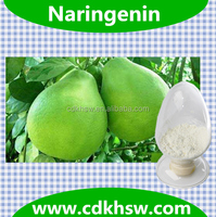 Fermentation Powder HPLC 95%- 98% Naringenin