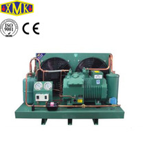 Blast freezer Bitzer semi-hermetic two stage compressor refrigeration condensing unit 2FES-2