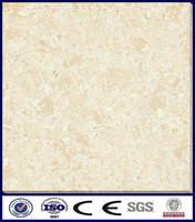 polished homogeneous floor tile